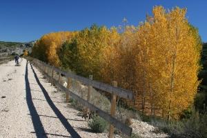 Luis Alfaro - Vía Verde en otoño